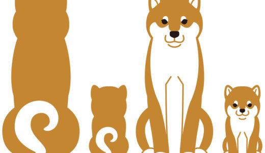 柴犬のぬいぐるみの選び方と人気おすすめ10選