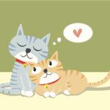 【絶対可愛い!】猫のぬいぐるみ人気おすすめ10選