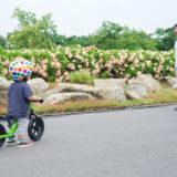 【人気ブランドは?】ストライダー用ヘルメットの選び方と人気おすすめ10選