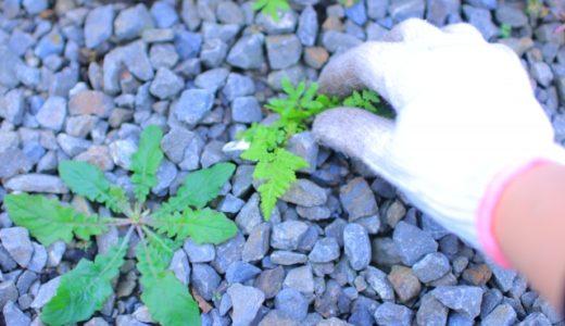 【効率良く駆除できる!】おすすめ除草剤の人気ランキングTOP10