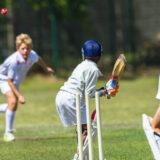 【スポーツ向きで使いやすい】おすすめクリケットの選び方と人気ランキングTOP5