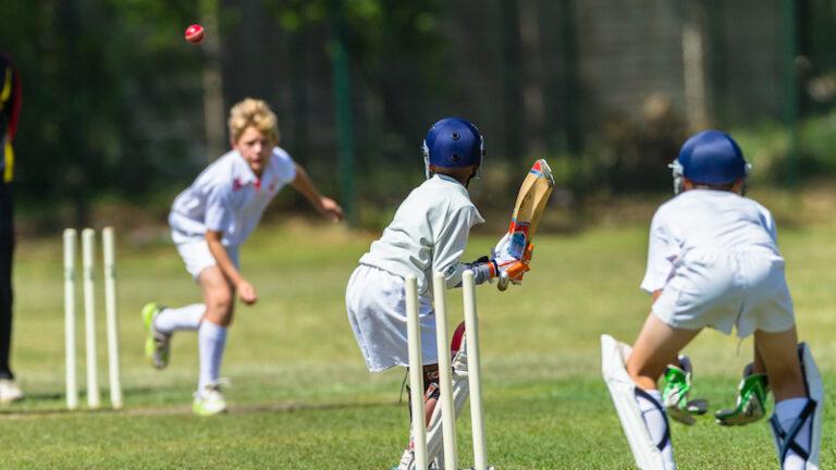 【スポーツ向きで使いやすい】おすすめクリケットの人気ランキングTOP5
